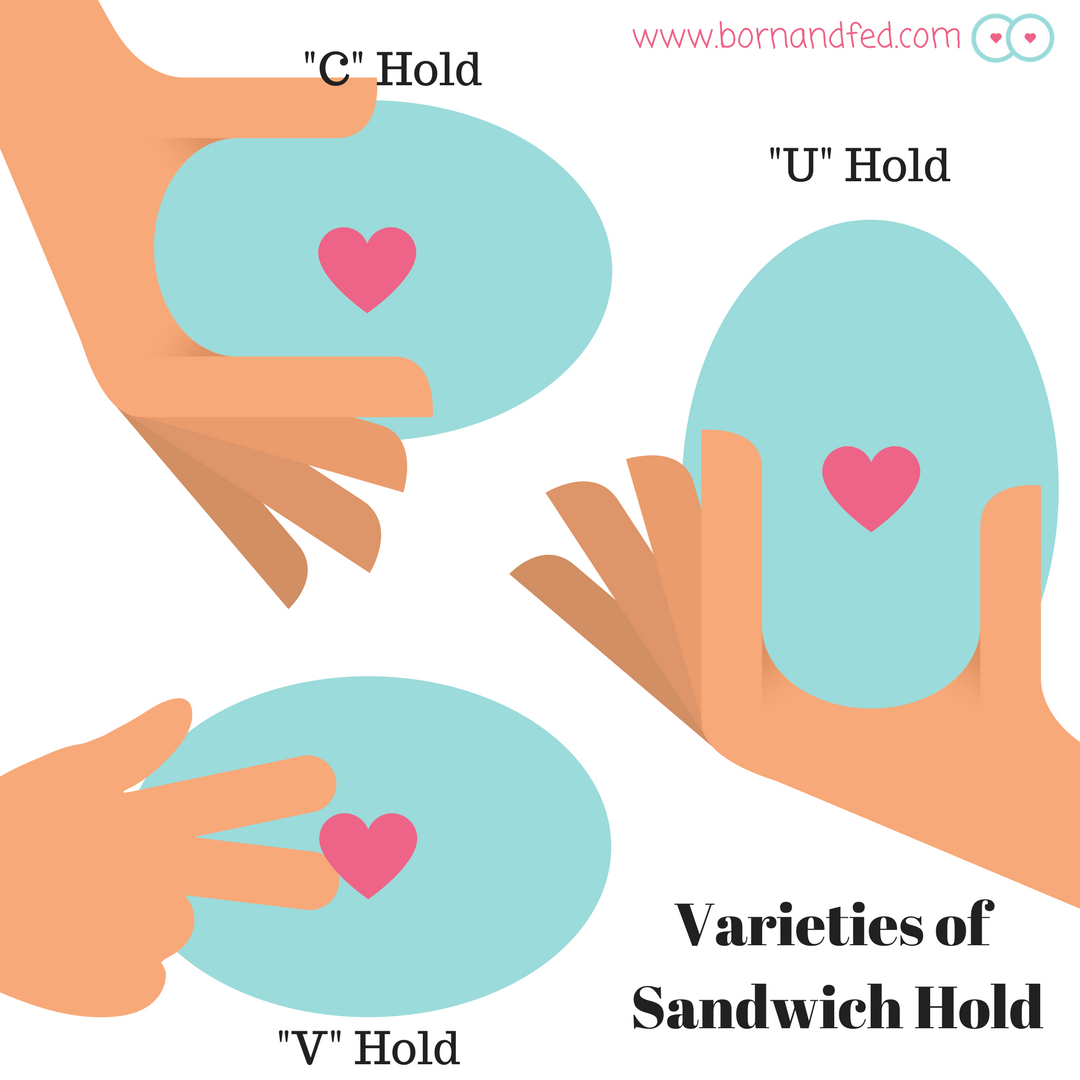 There are a variety of sandwich holds