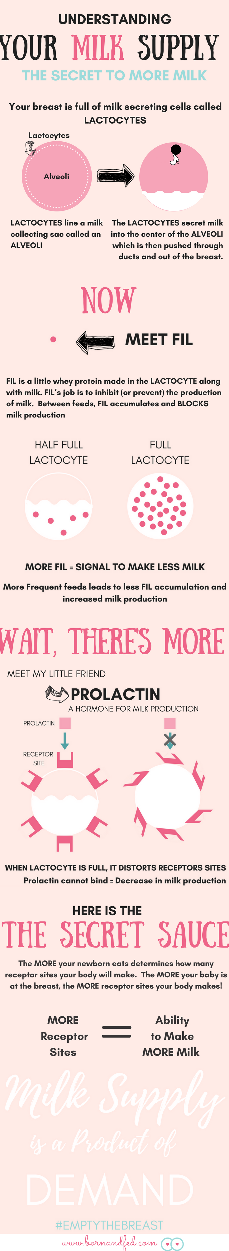 #bornandfed-The secret to making MORE BREAST MILK is understanding how your body makes milk. It is more than supply and demand. How much you feed in the early stages of lactation actually influences your ability to make milk throughout your whole breastfeeding cycle! Make more milk, pumping tips, breastfeeding tips, breastfeeding newborn, breastfeeding supply and demand, increase milk supply